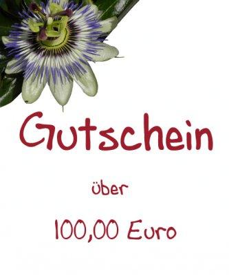 Gutschein - 100,00 Euro -