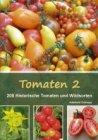 Tomaten 2