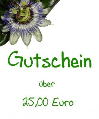 Gutschein - 25,00 Euro -
